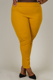Plus Size Skinny Fit Pants