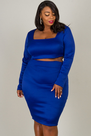 Plus Size Basic Top & Skirt Sets