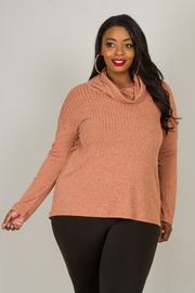 Plus Size Cowl Neck Long Sleeve Top