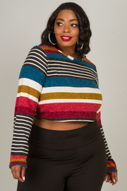 Plus Size Long Sleeve High Neck Crop Top
