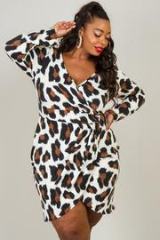 Plus Size Leopard Print Long Sleeve Dress