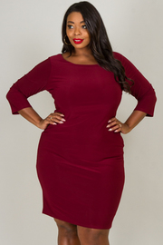 Plus Size Fitted Crew Neck 3/4 Sleeve Dress