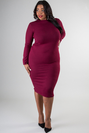 Plus Size Crew Neck Long Sleeve Fitted Dress