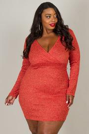 Plus Size Deep V-Neck Long Sleeve Mini Dress