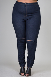 Plus Size Skinny Jean Distressed At The Knee