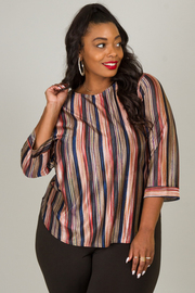 Plus Size Multi Color Stripe Top