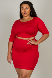 Plus Size Long Sleeve Crop Top And Skirt Set