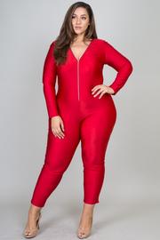 Plus Size  Long Sleeve Zipper Plunge Slinky Jumpsuit