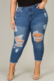 Plus Size Distressed Jean