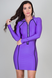 Long Sleeve Zipped Up Fitted Mini Dress