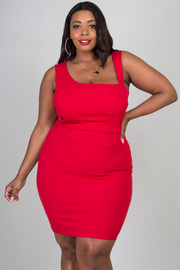 Plus Size Sleeveless Fitted Mini Dress