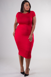 Plus Size Short Sleeve Crew Neck Fitted Dress