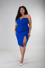 Plus Size Strapless Sweetheart Small Slip Fitted Dress