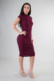Short Sleeve High Neckline Knit Fitted Dress