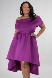 PLUS SIZE ELEGANT TUBE HIGH LOW SOLID DRESS