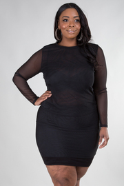 PLUS SIZE SHEER LONG SLEEVE TOP AND SKIRT SET