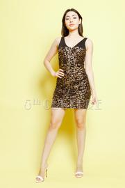 Leopard Print Front Zip Up Dress