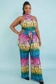 Plus size rainbow floral print jumpsuit