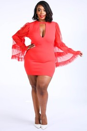 Plus Size Tiered mesh sleeve dress.