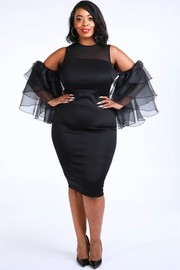 Plus Size Tier Sleeve Dress.