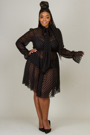 Plus Size Bow tie see-through dot lace lovely dress.