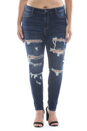 Plus Size High rise destroy ankle skinny.