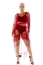 Look inside sheer mesh dress with ruffle.