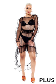 Plus Size Look inside sheer mesh dress with ruffle.