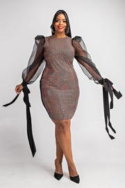 Plus Size Organza slv with tie detail trans dress.