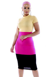 Colorblock short slv dress.