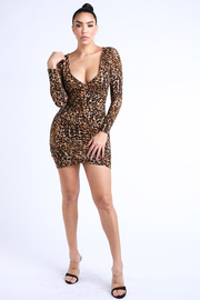 Leopard long sleeve wrap dress.