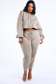 Plus Size Crop hoodie jogger set.