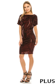 Plus Size Sequince dress.