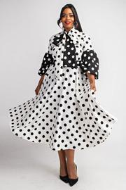 Plus Size Color block polka dot mid length dress.