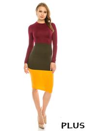 Plus Size Colorblock long sleeve dress.