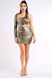 Faux leather animal print dress.