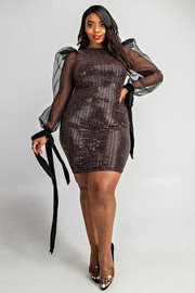 Plus Size Organza slv with tie detail trans dress.