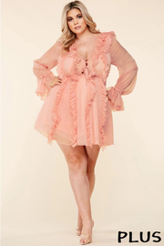 Plus Size Blush pink mini dress comes in a sheer textured chiffon fabric.