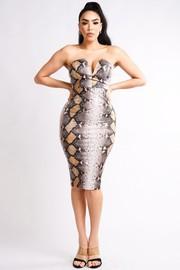Snake Print dress.