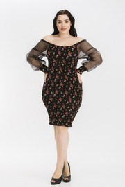 Plus Size Floral print with olganza sleeve dress.