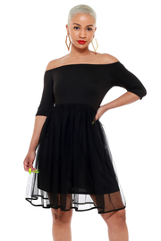 Off the shoulder mesh sheer pleated dress.