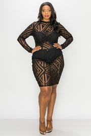 Plus Size Long Sleeve mesh mini Dress.