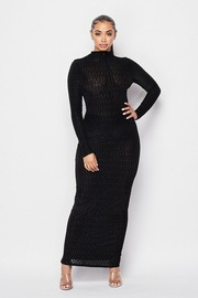 Semi Sheer long sleeve mock neck maxi Dress.