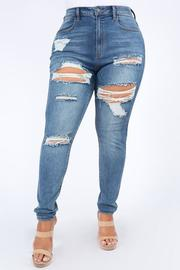 Plus Size High Waist Disstressed Jeans.