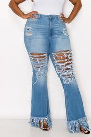 Plus Size High Rise Skinny Flare jeans.