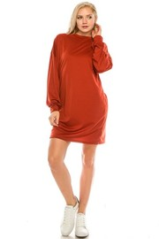 Plus Size French Terry Long Sleeve Mini Dress.