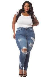 Plus Size High Waist Distressed Denim jean.