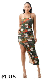 Plus Size Printed Dress.