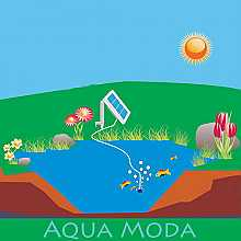 Solar Powered Pond Oxygenator Pump 1 airstone