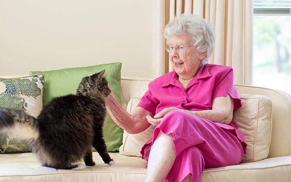 Senior and Cat